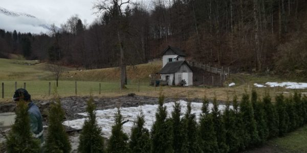 "COMMOD HOUSE NG ""Drachenhaus"""