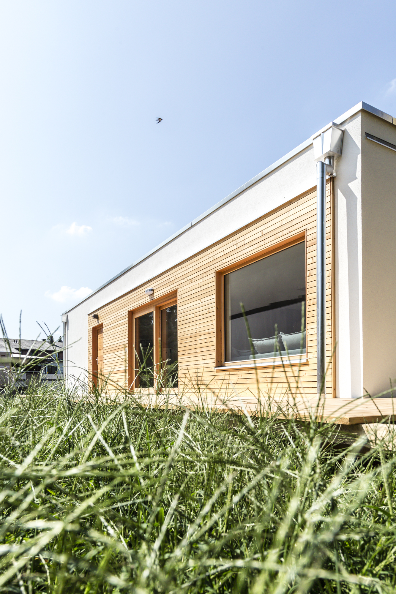 House Of The Dog 92m² Bgf Commod